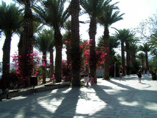 В Июне в Эйлате солнечно и ни капли дождя
