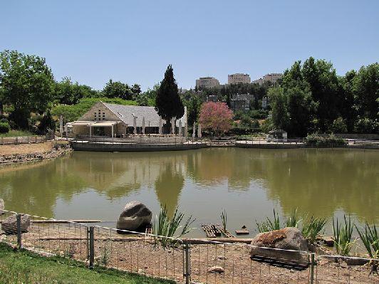 Иерусалимский ботанический сад примечателен тем, что имеет деления по частям света,  и располагает садом специй