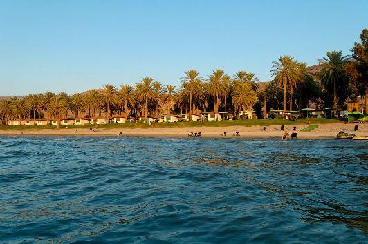 Пляж на курорте ''Эйн-Гев'' c пальмовой рощей