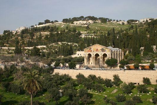 Масличная гора - самая высокая гора, окружающая Иерусалим, она неоднократно упоминается в Евангелие и связана с Иесусом