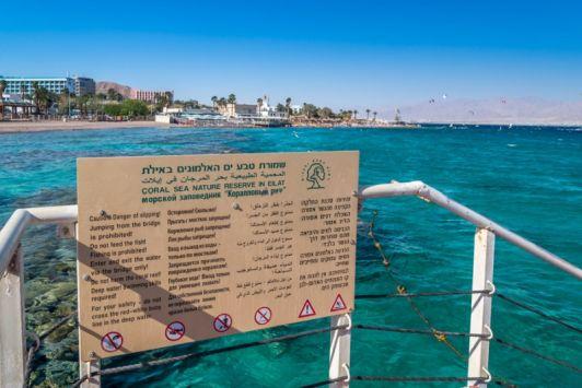 Территория Кораллового пляжа относится к заповедной зоне, об этом гласит табличка на 4-х языках