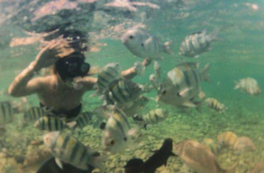 На пляже Мигдалор чтобы увидеть всю красоту подводного мира, достаточно нырнуть в море с маской и ластами