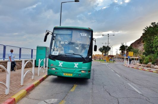 На автобусах в Эйлате можно добраться куда угодно